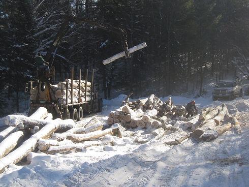 Log Truck Loading.JPG
