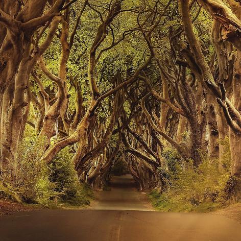 Game of Thrones & Film Locations