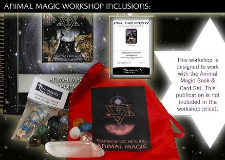 Anima Magic Workshop