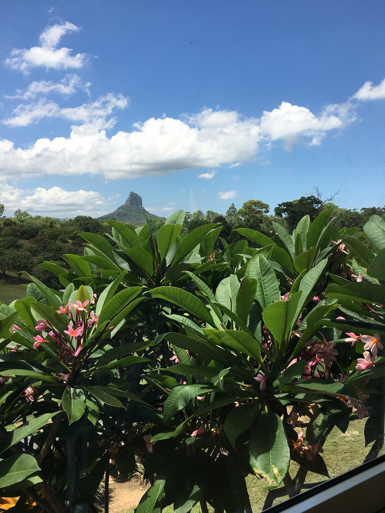 Glass House Mountains Lookout Cafe