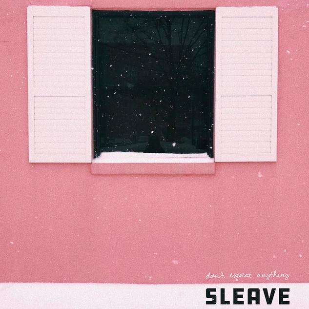 IGN273 Sleave