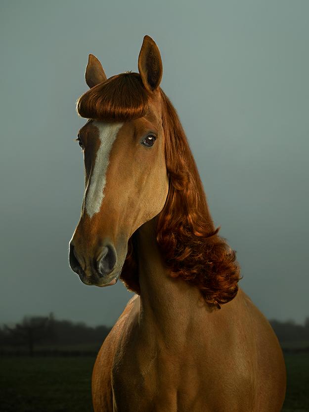 Pony Pin Ups