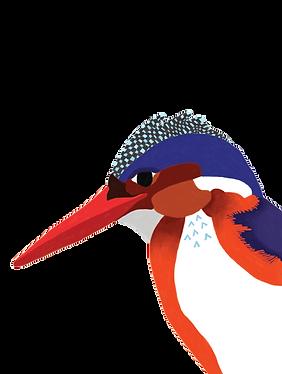 illustration-oiseau-dessin-couleurs-illustratrice.png