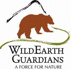 wild earth guardians.jpeg