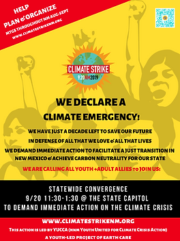CLIMATE STRIKE FLYER, for 2 per page printing