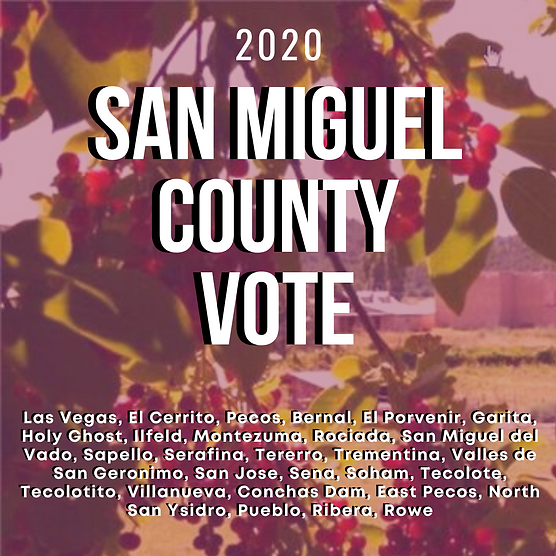 San Miguel County Basic Election Info.pn