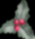 Vector Smart Object copy 10.png