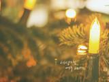 cali-light-thanksl_Desktop1.jpg