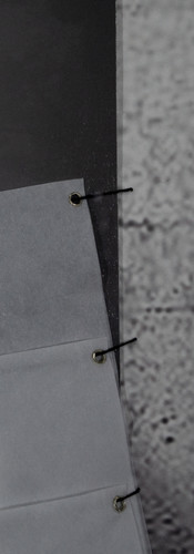 APPARITIONS (DETAIL)