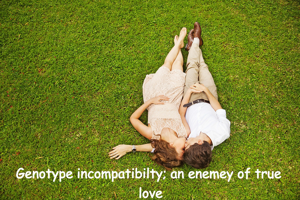 Genotype incompatibility; an enemy of true love. econsult business blog