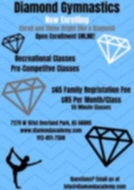Diamond Gymnastics Rec Flyer 2019.jpg