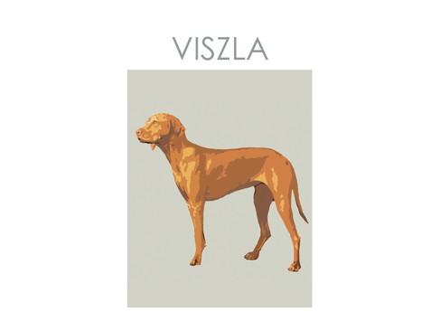 VISZLA Print noths  copy copy.jpg