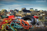 You can never TIRE of Peggy's Cove