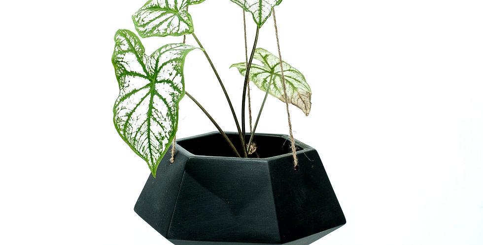Black Hanging Planter