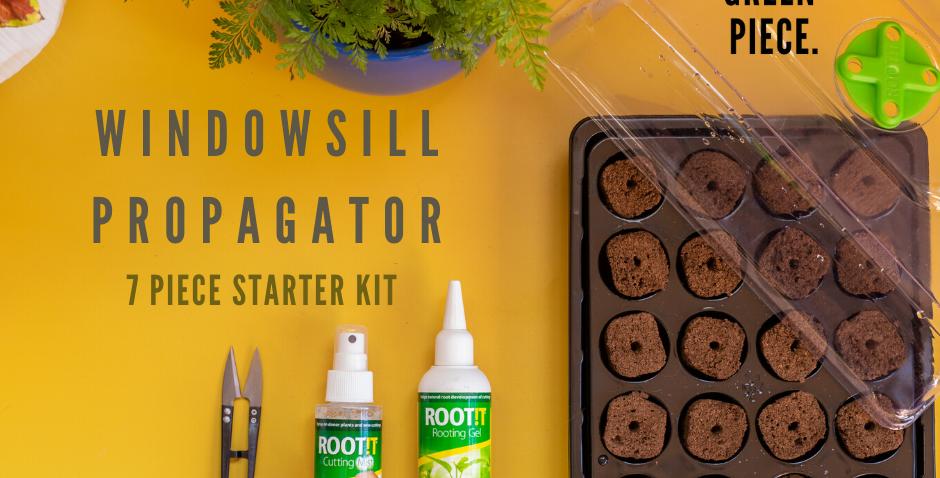 Windowsill Propagator Starter Kit