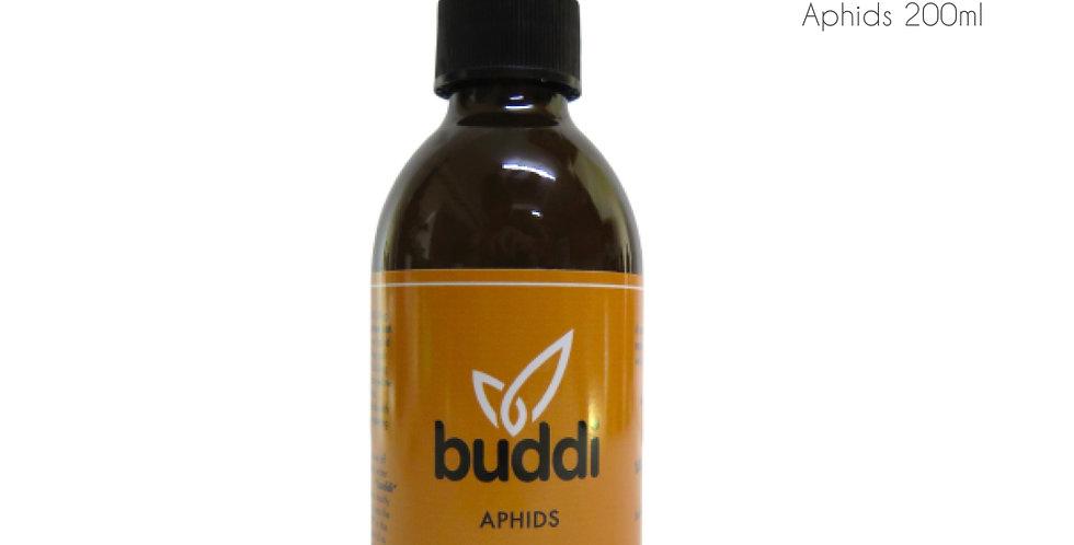 Buddi Spray - Aphids