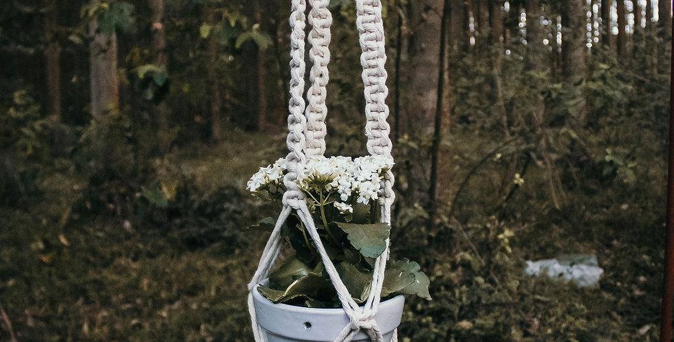 Yarn Palm 'Lily' Plant Hanger