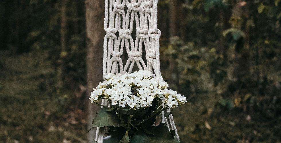 Yarn Palm 'Iris' Plant Hanger