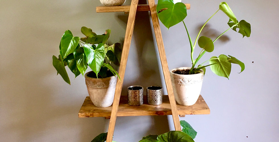 Indoor Plant Shelfie - Dark Oak