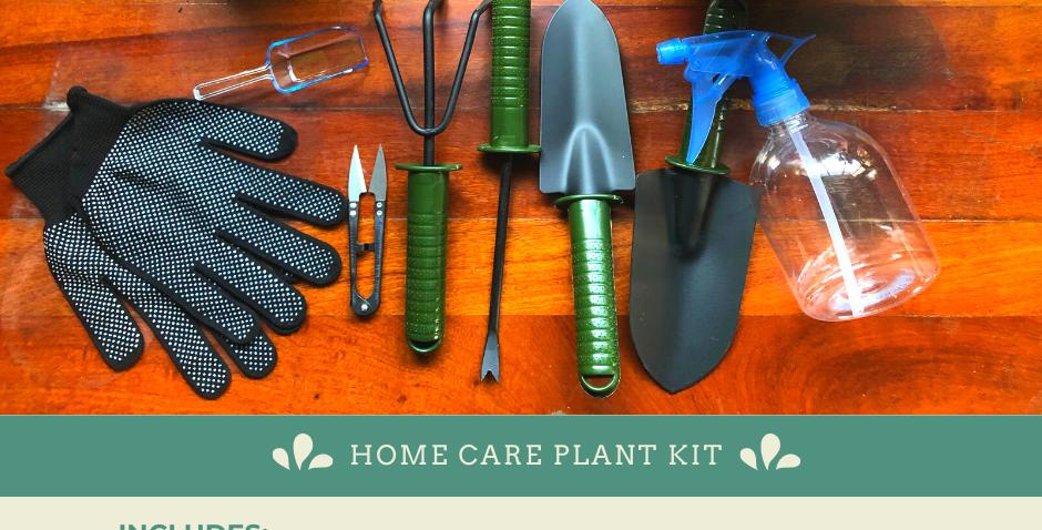 Home Care Plant Kit