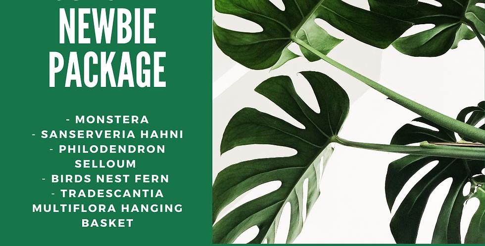 Urban Jungle Newbie Package - 5 plants