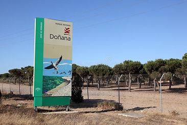 parque-nacional-de-donana-spain-26174760