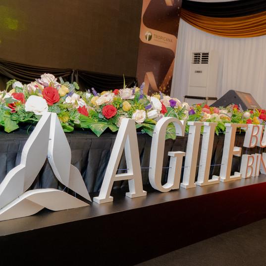 Agile-1.jpg