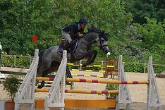 Upsy Du Haut Pont, étalon poney, Haras du Phoenix