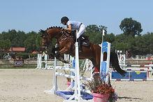 Best of Tilia Derlenn, valorisation poney de sport 2015, Haras du Phoenix