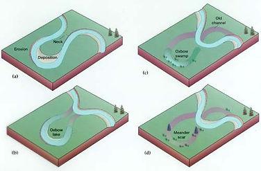 river diagram for kids
