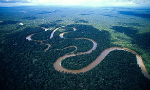 River facts - The amazon river in Brazil is the longest river in the world.
