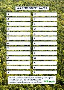 rain forest vocabulary worksheet