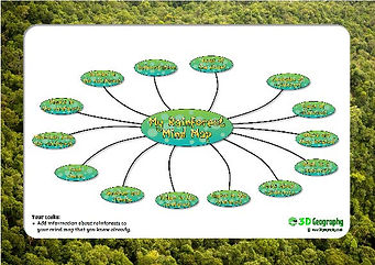 rainforest mind map worksheet