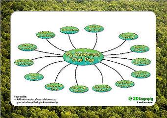 rainforest mind map worksheet
