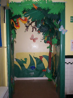 class displays rainforest 14
