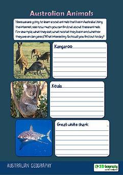 australian animals ks2