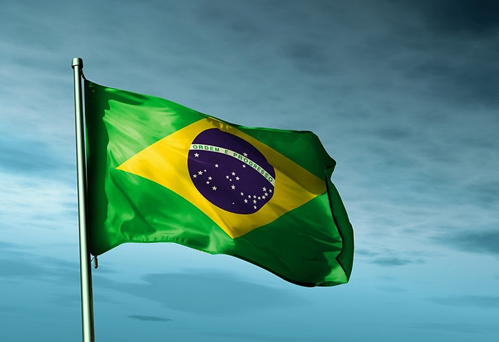 pictures of brazil flag