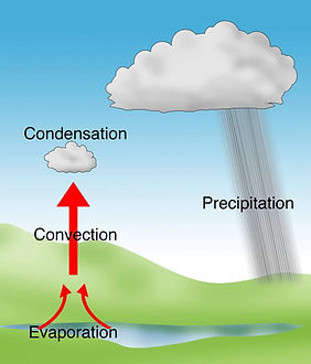 types of rainfall | convectional rainfall diagram