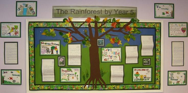 class displays rainforest 9