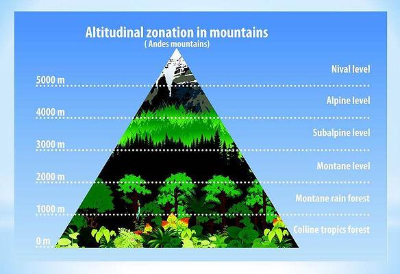 mountain diagram