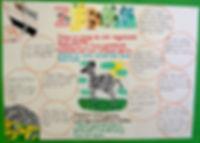animal facts   africa animals   kenyan animals   KS2 Geography   animal posters