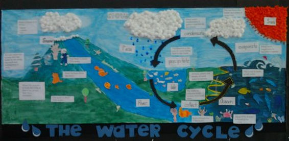 water cycle class display