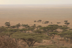 Sparsely populated - Plains