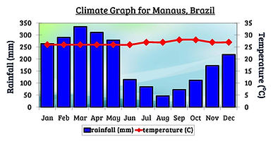 equatorial climate graph | rain forest climate graph | amazon rainforest climate