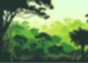 rainforest shoebox