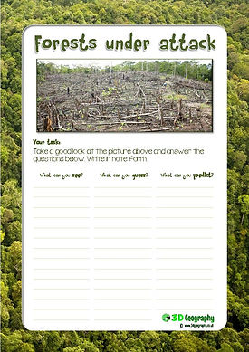 chopping down the rainforests worksheet