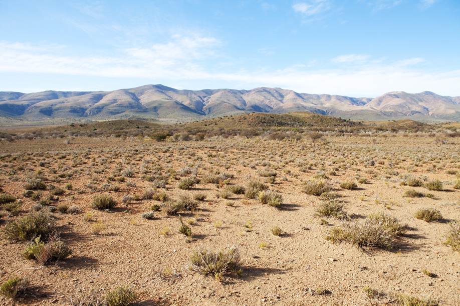 Sparsely populated - Desert scrub