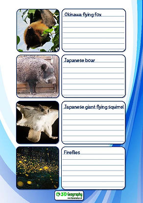 worksheet on japanese fauna