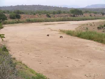 river facts - dried up river