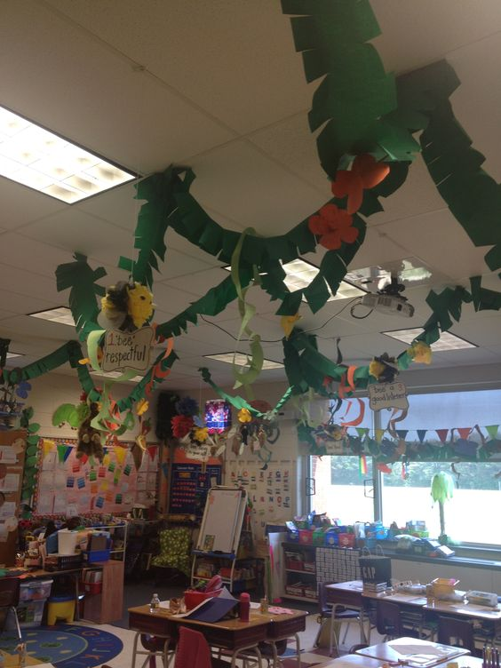 class displays rainforest 13